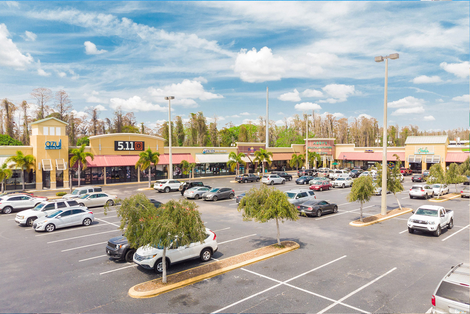 The Shoppes of Carrollwood